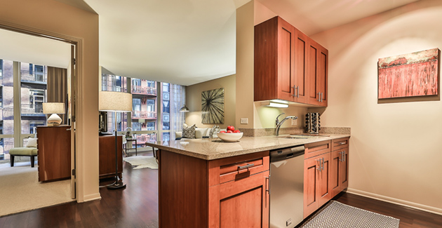 kitchen counter and living room of apartment in 215 West, Chicago