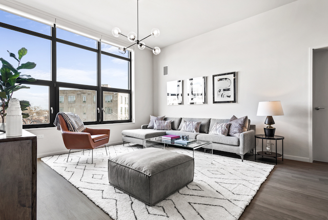 living room with large windows and grey sofa in Logan Square Chicago apartment for rent