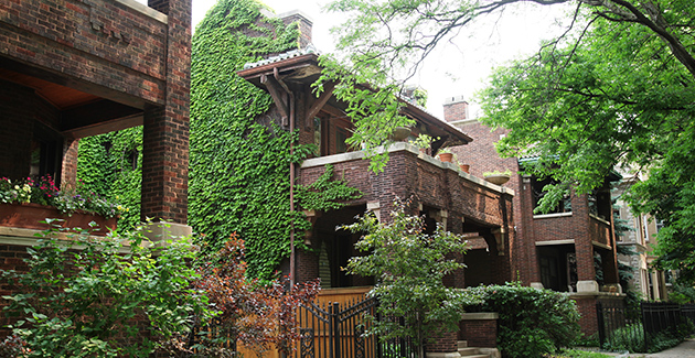 historic homes and apartments along a leafy boulevard in Logan Square neighborhood, Chicago, IL