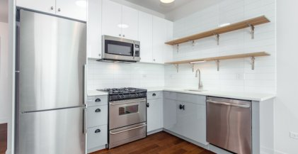ktichen with stainless steel appliances and open shelving storage in Chicago apartment for rent