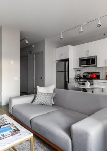 a grey sofa in the living room of a furnished apartment for rent in South Loop, Chicago