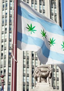 digitally altered Chicago city flag with green hemp leaves in place of red stars flies in front of Chicago Tribune Tower