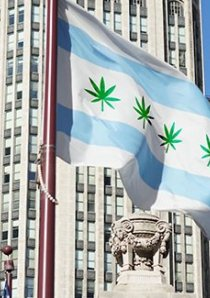 a digitally altered version of the Chicago Flag with hemp leaves instead of red stars
