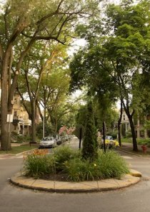 traffic circle on residential side street in Chicago with apartments in background