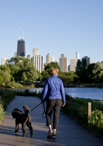 woman walking dog on Lincoln Park Zoo nature boardwalk in Chicago