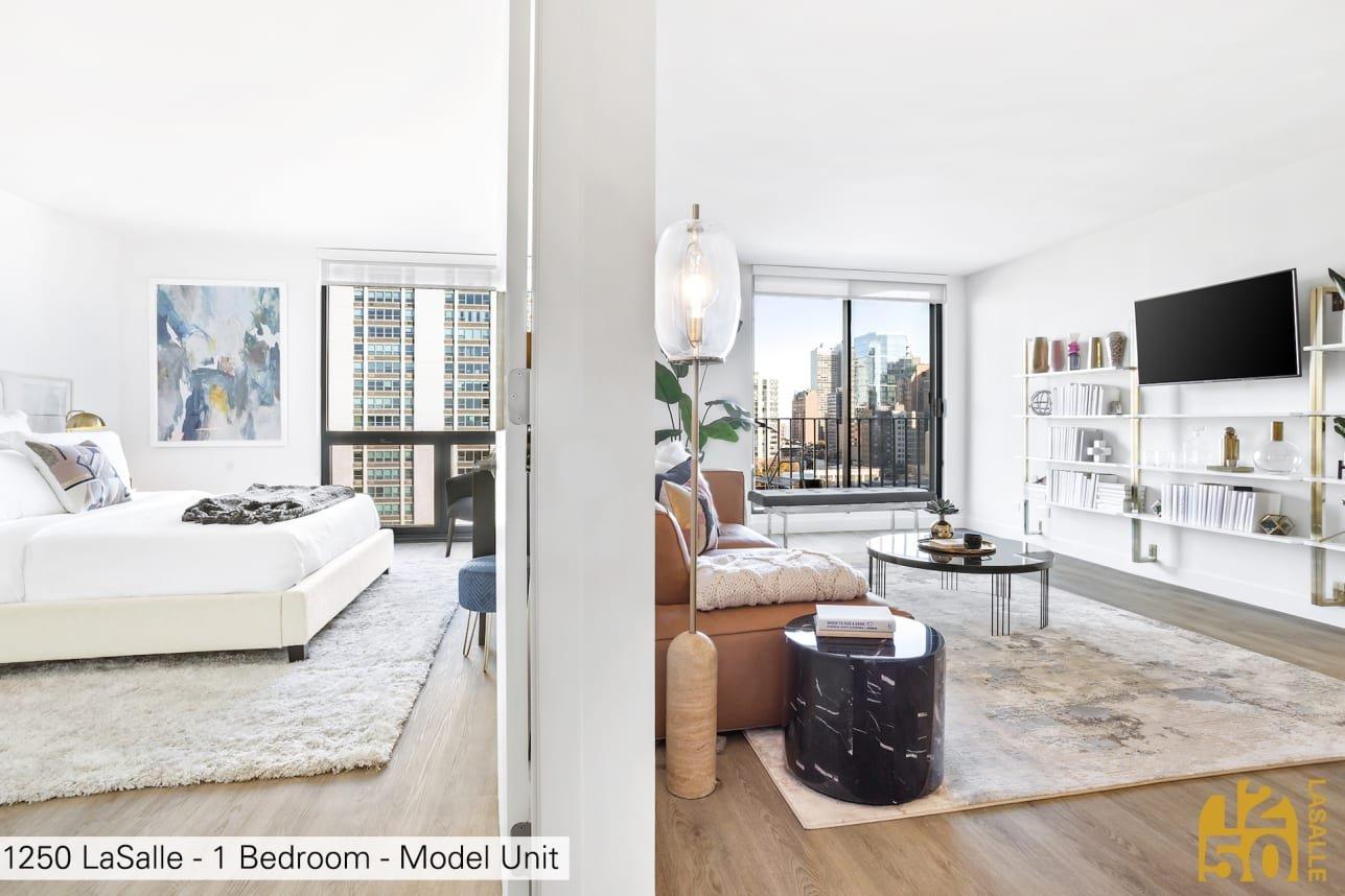 1250 North LaSalle Apartments